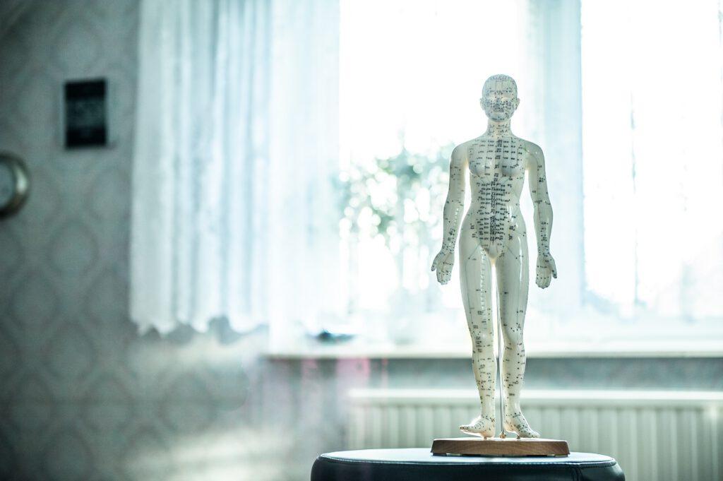 Poszukujesz profesjonalnego fizjoterapeuty? Przeczytaj ten artykuł!